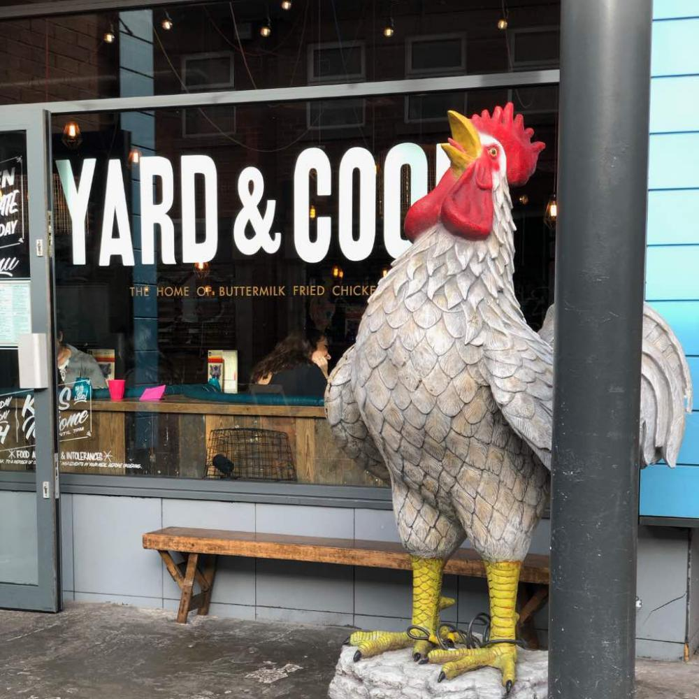 Yard & Coop: Review